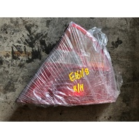Mitsubishi Lancer CJ right side back rear light E16118